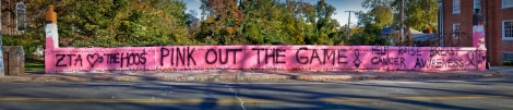ZTA ♡s THE HOOS PINK OUT THE GAME  HELP RAISE BREAST CANCER AWARENESS  THX BETA
