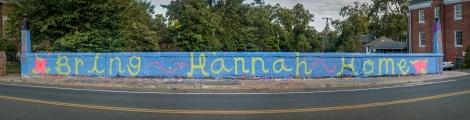 Bring Hannah Home